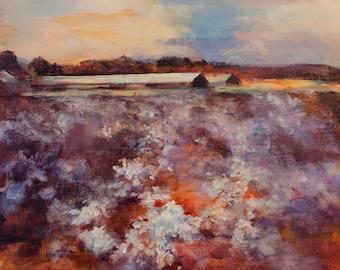 Colorful Landscape of Texas Cotton Fields