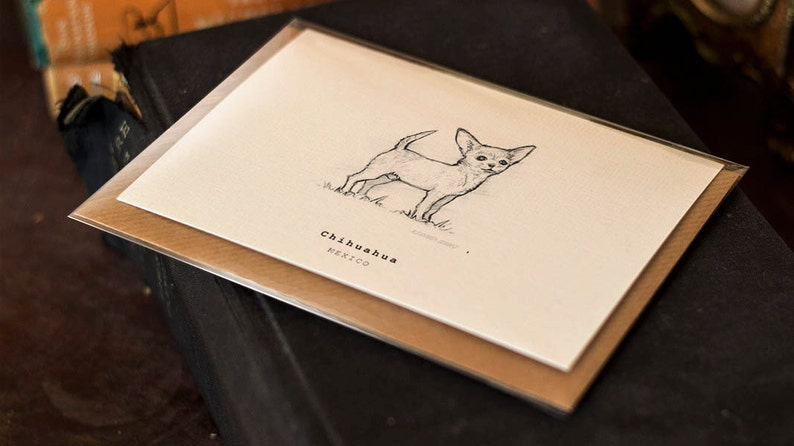FREE P/&P for UK Chihuahua Greeting Card Beautifully drawn luxury handmade on heavy textured card