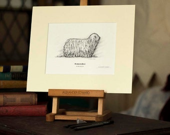 Komondor - Beautifully hand-signed print drawing on a light ivory mount frame.