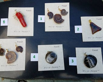 Fossil collection No.1 - two incredible ammonite sets as well as unique Pecora Pendants
