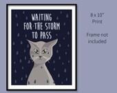 "8x10"" Storm Cat Prin..."