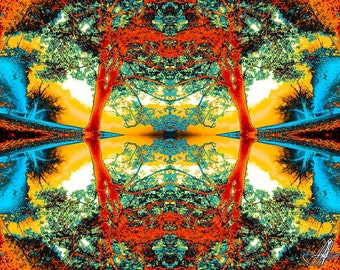 07339 Fine Art Abstract Photography Kaleidoscopic Trees Etsy