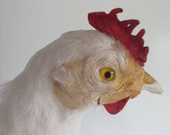 antique anatomicall model of a chicken for school education