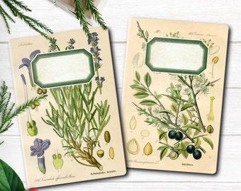Gift set of notebooks