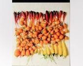 Carrot Gradient Postcard