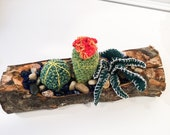 Crochet Succulent Garden in a Hand Sculpted Wooden Log