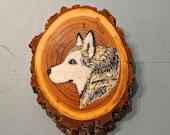 Malamute Smirk Woodslice Painting