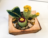 Crochet Succulent Garden in a Hand Sculpted Wooden Bowl
