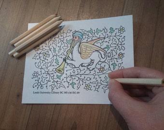 Fantastic animals and medieval grotesque colouring book - handbound