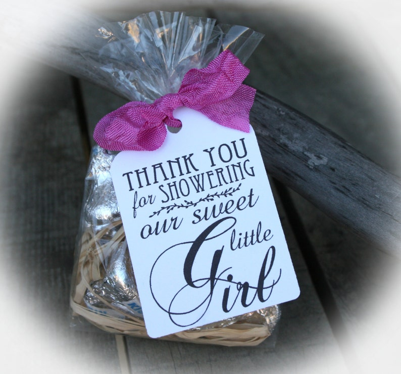 Girl Baby Shower Favor Idea 20 To 100 Diy Bags Favor Tags Etsy