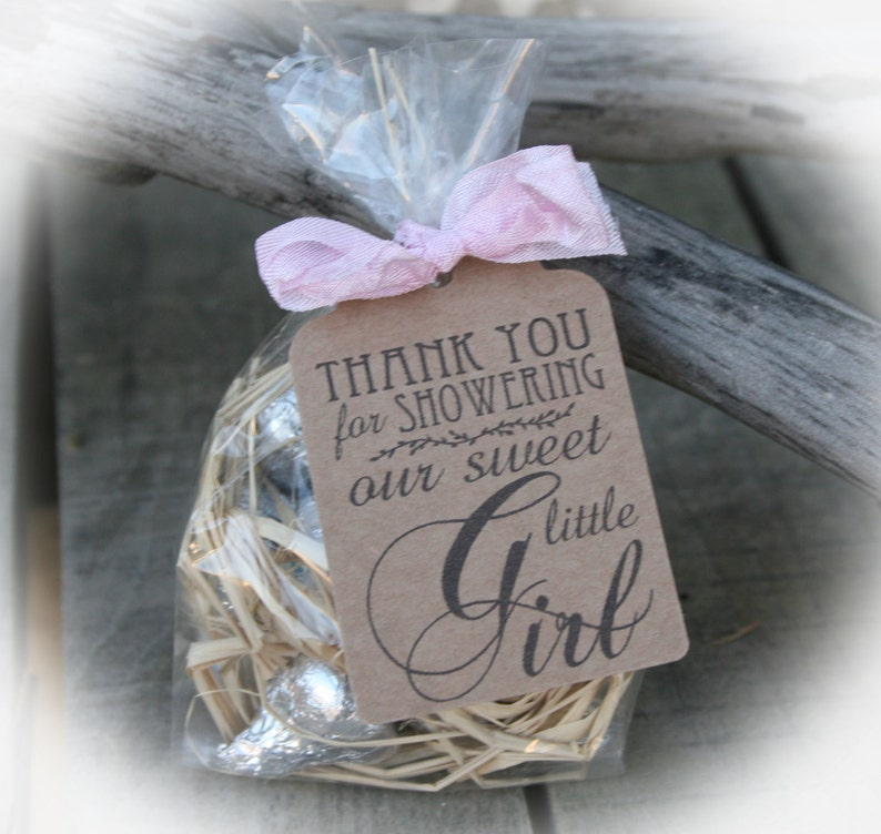 Girl Baby Shower Candy Favors Diy Bags Favor Tags Etsy