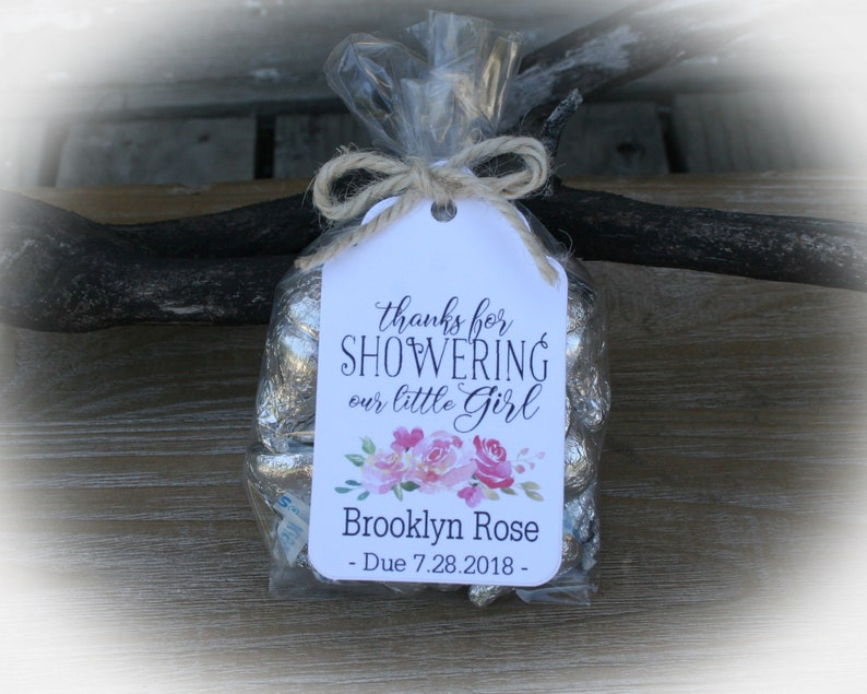 Girl Baby Shower Favors 20 To 100 Diy Bags Favor Tags Candy Etsy