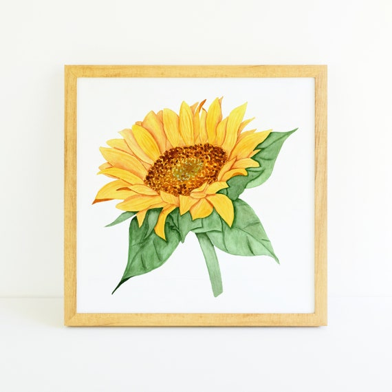 Sunny Sunflower in Watercolor (11x11)