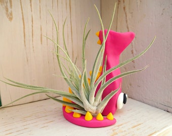 Pink Dragon w/ Yellow Spines - Monster Air Plant Holder