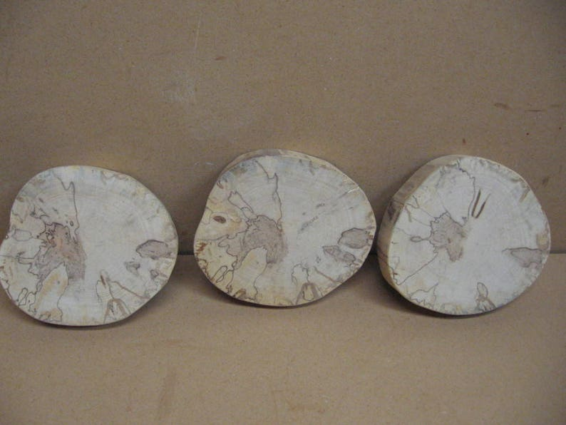 no bark 3 lighter colored spalted birch with spots ad trails