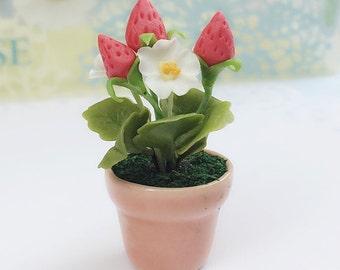 Miniature Strawberry Tree,Miniature Flower Pot,Miniature Flower,Dollhouse Strawberry Tree,Miniature Strawberry,Dollhouse Strawberry
