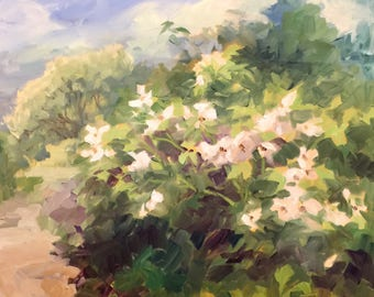 Plein Air painting, Wild Rose planted by the Birds, painted May 25, Oil on Panel by Alexia Scott.