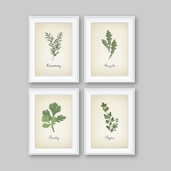 kitchen decor kitchen art. herbs art print. herb art. herbs | etsy