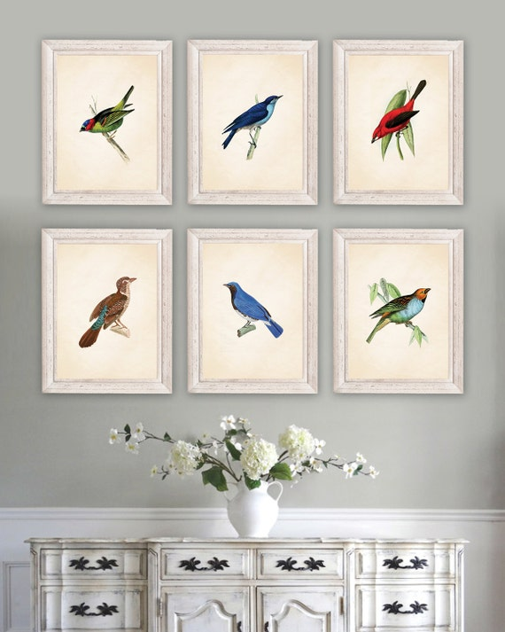 Audubon Bird Prints Art Print Dining Room