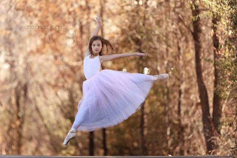 Dancing Ballerina: hand dyed ombre tulle skirt / ladies tulle image 0