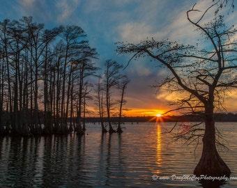 Sunset on Reelfoot Lake #8937