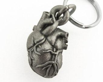 Human Heart Anatomy Keychain - Human Heart Locket, Cardiology, Medical Gift, Biology gift, Corazon, Anatomical Gift