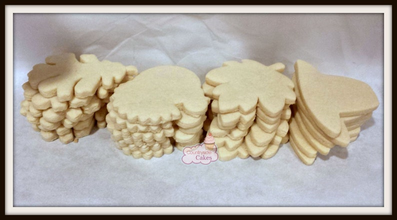 Decorate Your Own Undecorated Sugar Cookies 1 Dozen Choose Your Own Shapes