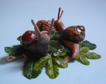 Two snails on leaves with walnut shell and dew drops, HAIRCLIP!