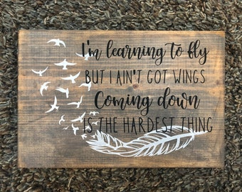 00a27c8cf Tom Petty Learning to Fly lyric with feather, handpainted sign, learning to  fly but I ain't got wings, coming down is the hardest thing