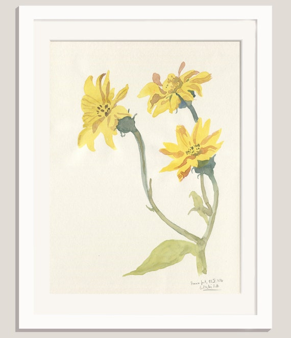Yellow Flowers Watercolour Painting Original Watercolour Etsy