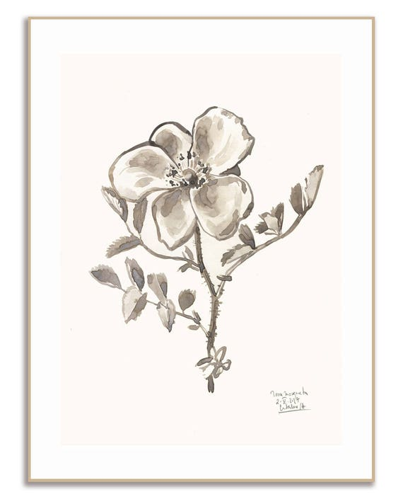 Rose Ink Drawing Botanical Print In Monochrome Black And Etsy