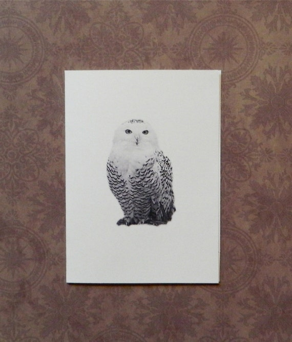 Set of 12 Handmade Blank Owl Print Note Cards Great Horned Snowy Owls Barred