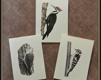 Set of 6 or 12 Handmade Blank Woodpecker Print Note Cards Pileated, Downy, Red Bellied