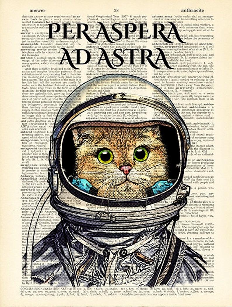 08edc3f70f411e Cat astronaut in space suit print Per aspera ad astra