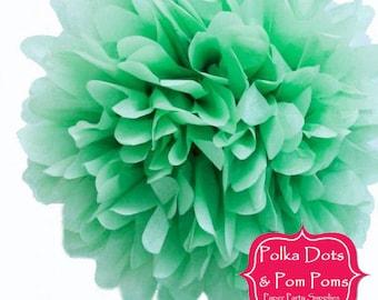 1 x 20cm MINT Green Tissue Paper POM POM / Birthday Party Decoration Ideas & Supplies / Pompom / Paper Flower / Wedding / Baby Shower