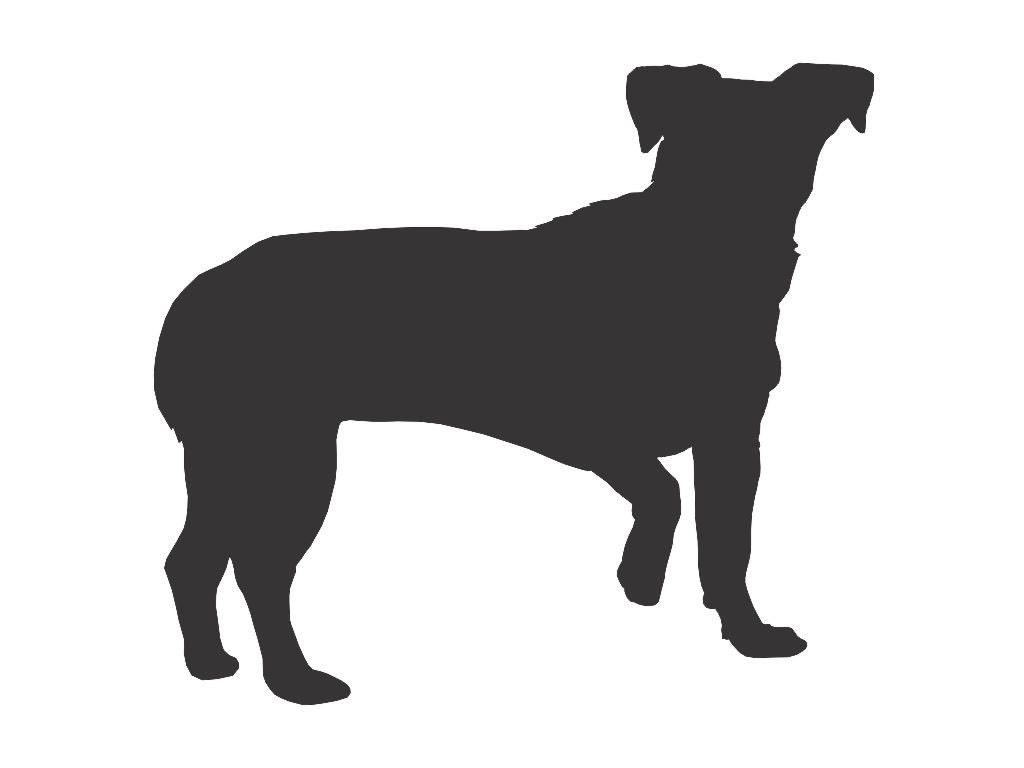 chiweenie dog silhouette custom die cut vinyl decal sticker etsy
