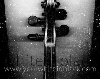 whiteINblack project - Violin - Digital Download 300 dpi