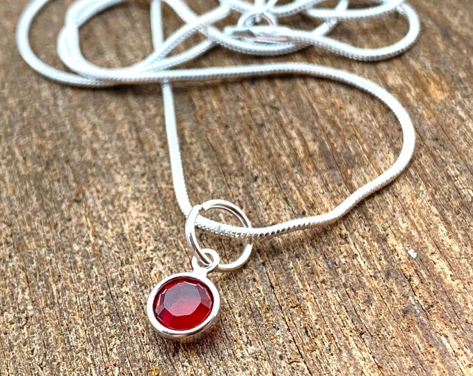 Birthstone Necklace  - January