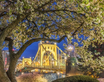 A springtime frame in Pittsburgh - Various Prints