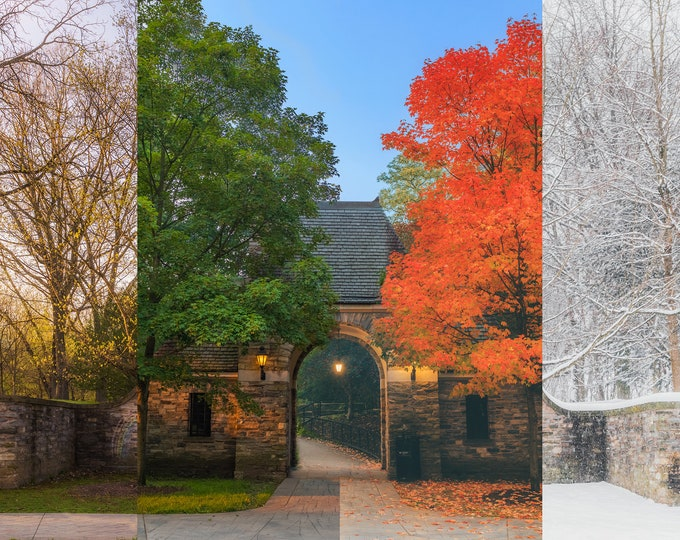 Four Seasons of Reynolds Street and Frick Park - A composite - Various Prints