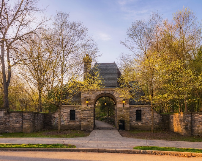 Four Seasons of Reynolds Street and Frick Park - Frick Park in Pittsburgh - Various Prints