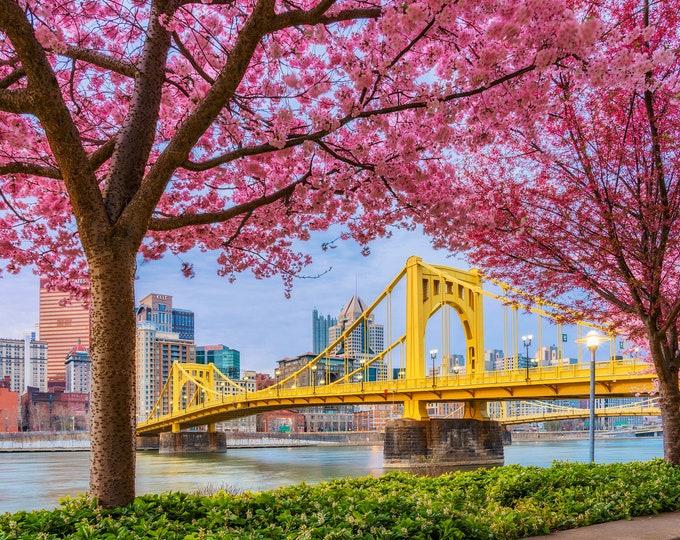 A springtime frame - Pittsburgh skyline - Various Prints