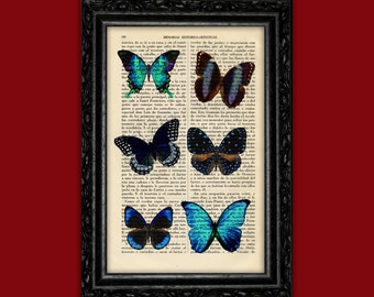 Butterflies Book Art Print Insect Butterfly Gift Poster Dorm Room Print Print Wall Decor Poster Dictionary Print Animal Art Print (Nº1)