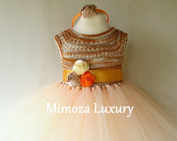 Caramel Girls tutu dress, 1st birthday dress
