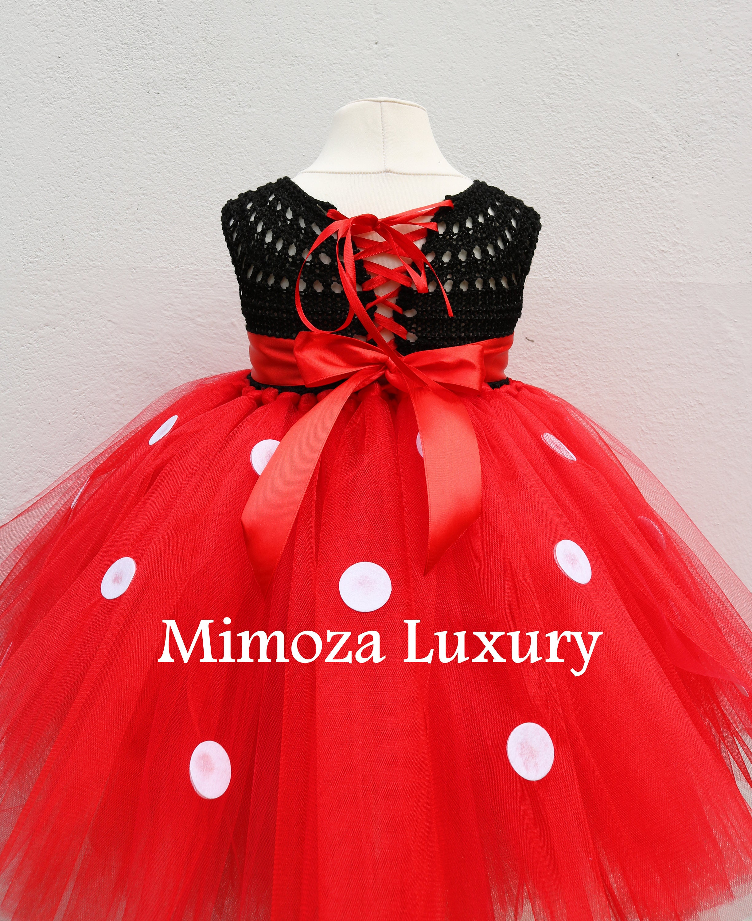 Minnie Mouse Birthday Dress Red Minnie Mouse Outfit 1st Birthday