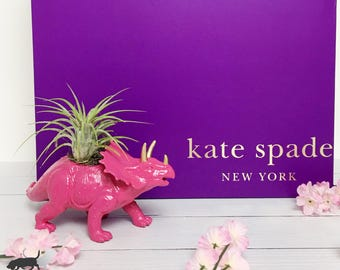 Hot Pink Triceratops Gold Accents Dinosaur Planter + Air Plant | Upcycled Planter | Home Decor Office Planter | Dorm Decor | Desk Accessory