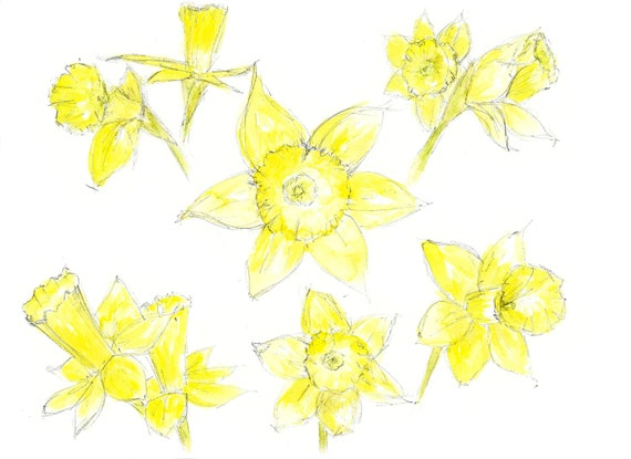 Daffodils Print Spring Flowers Easter Flowers Daffodils Etsy