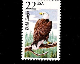 10 Bald Eagle Free Shipping Pack Of