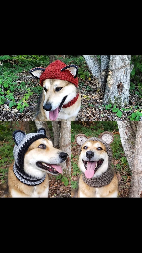Crochet Pdf Pattern Make Your Own Dog Costume Fox Raccoon Etsy