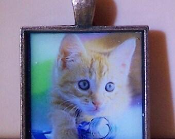 Cute kitten cat bezel necklace pendant